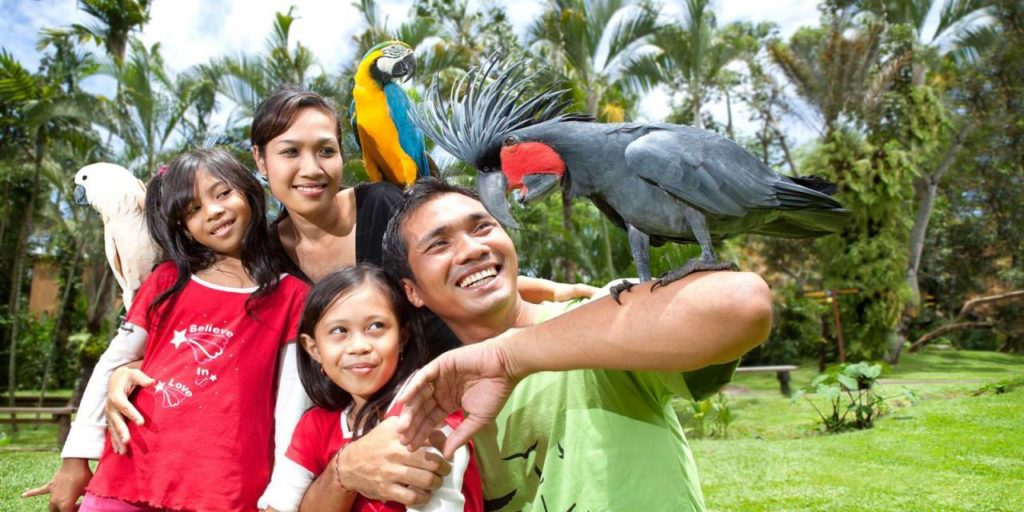 Bali Zoo Combination Packages 9