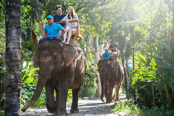 Harga Tiket Masuk Bali Zoo 2021 Promo Khusus WNI 4