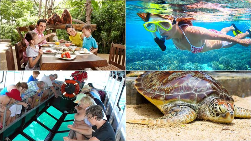 Bali Zoo Combination Packages 12