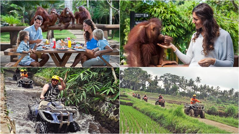 Bali Zoo Combination Packages 13