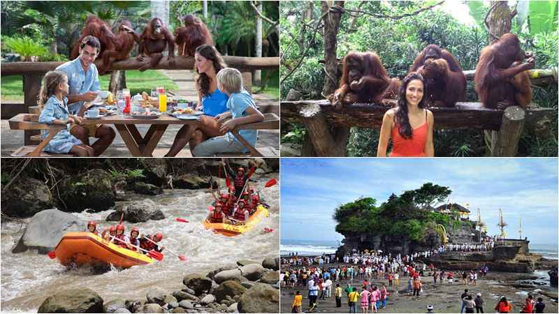 Bali Zoo Combination Packages 14