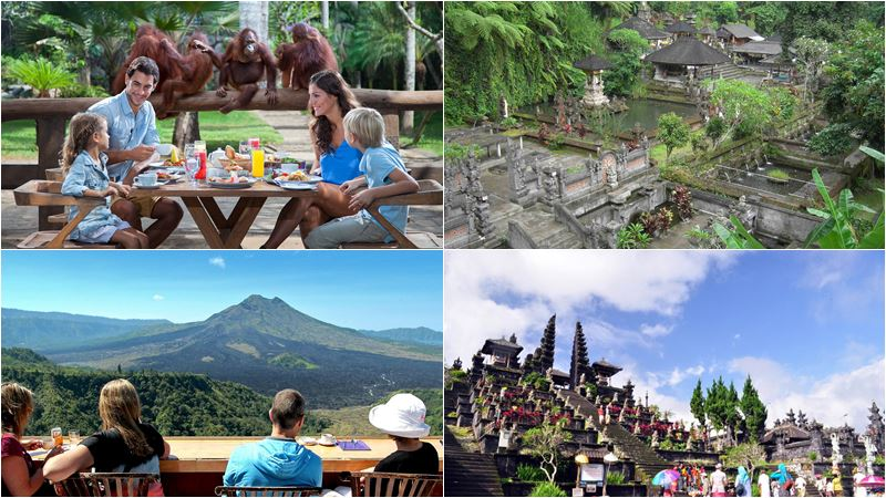 Bali Zoo Combination Packages 17